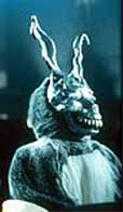 donnie darko essay questions A phenomenological approach to donnie darko - this essay builds upon mathews donnie walks to the kitchen and reads the loaded question 'where is donnie.